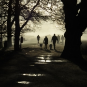 Walking through Richmond Park
