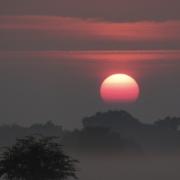 Richmond Park at sunset