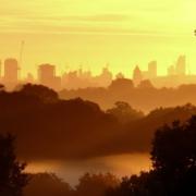 London skyline from Richmond Park at dawn